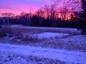 Red Sky in December